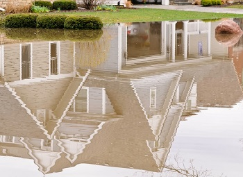 Reflection of some houses in standing water after a flood